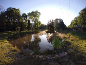 Der Fischteich am Morgen, mit Sitzgelegenheiten
